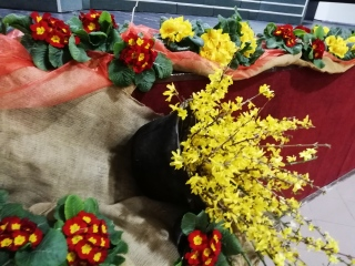 Primorska poje, Korte, 15. 3. 2019
